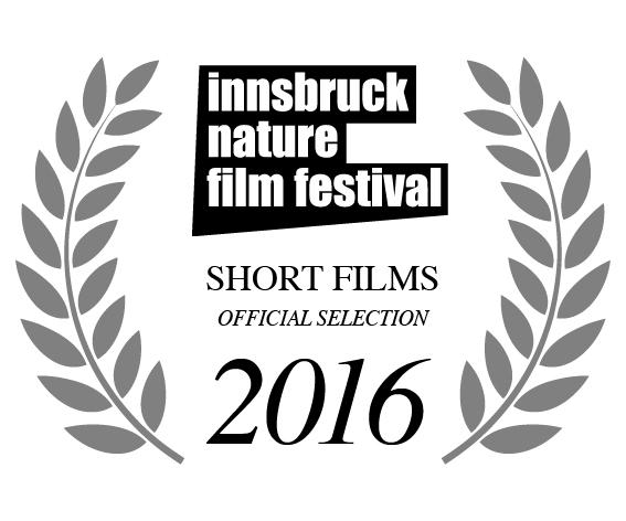 http://tanyacochrane.co.uk/wp-content/uploads/2018/02/short-films.jpg